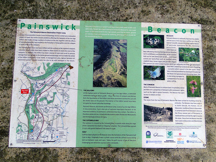 Information board at Painswick Beacon