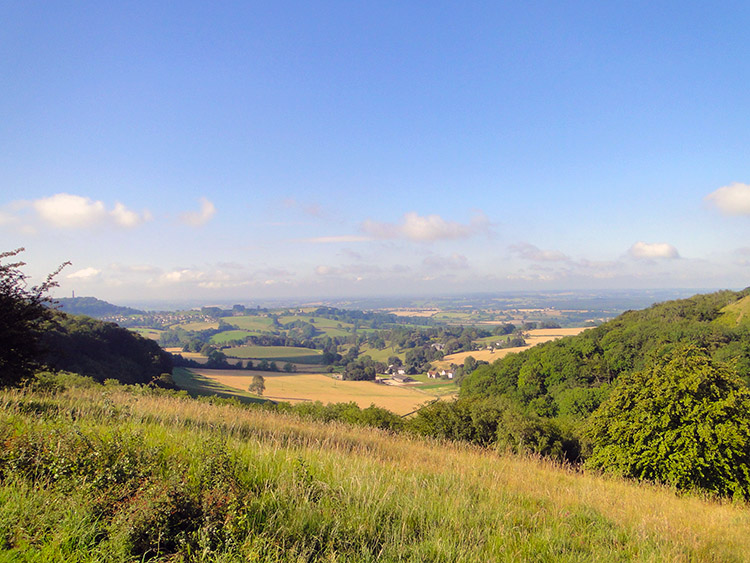 Looking south from Stinchcombe Hill