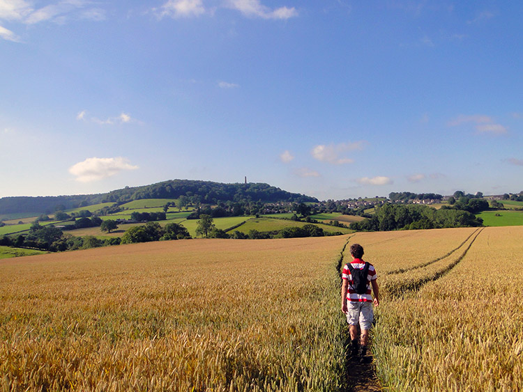 Crossing a grain field toward North Nibley