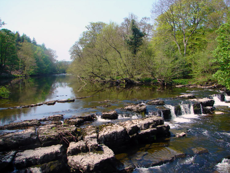Redmire Force