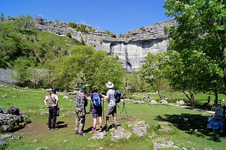 Peregrine Falcon watchers of Malham Cove