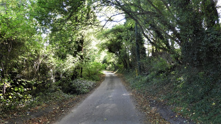 Quiet lane to Wiveton
