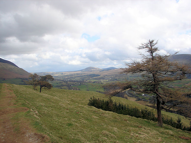 View to Binsey from Latrigg