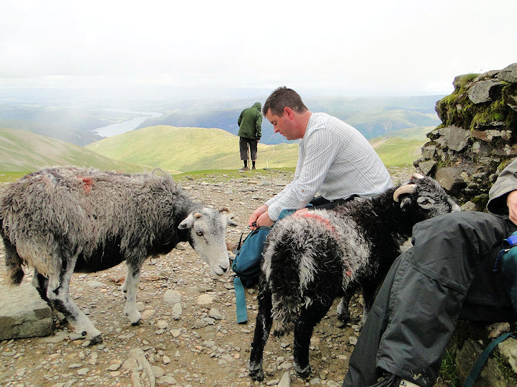 The thieves of Helvellyn