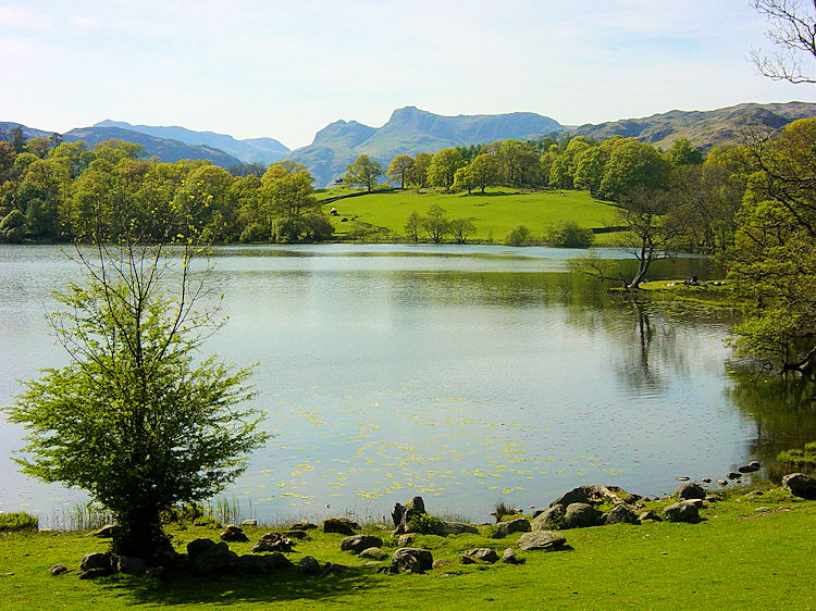 Exquisite view of Loughrigg Tarn