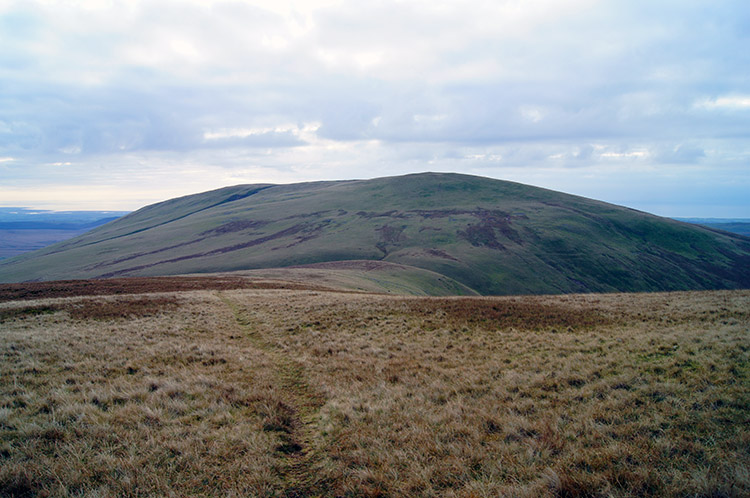 Lank Rigg as seen from Whoap