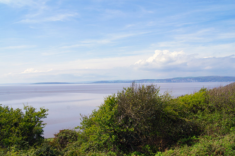 View of Morecambe Bay from Jack Scout