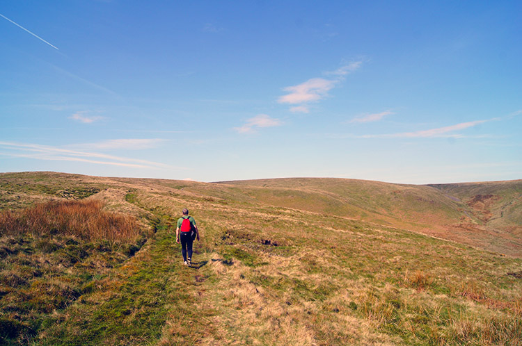 Easy going from Wisket Hill to Dunsop Head