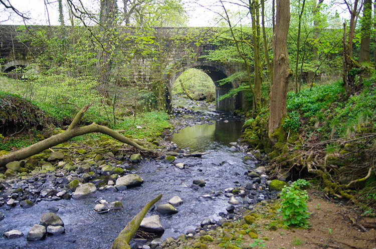 Sabden Brook flowing under Read Old Bridge