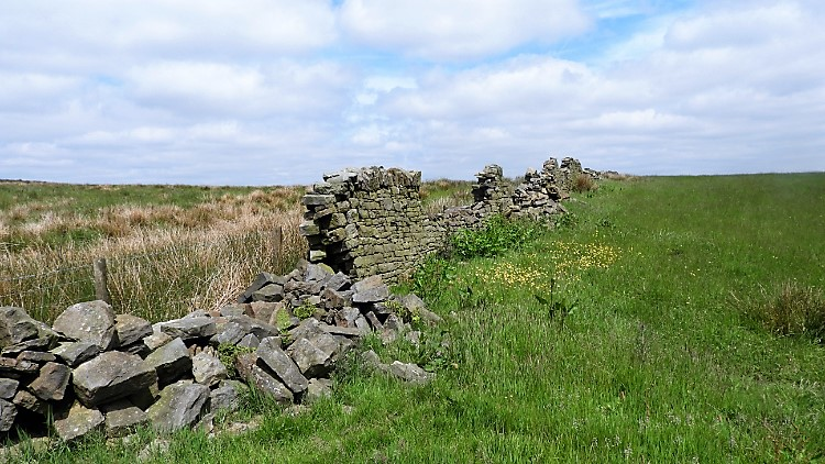 Collapsed drystone wall, Black Hill