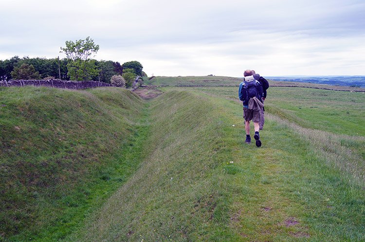 Following the Vallum to St Oswald's Hill Head Farm