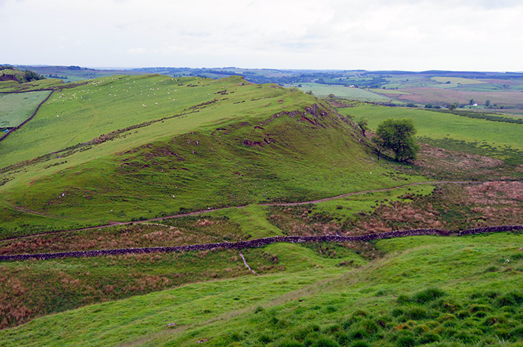 Sloping field on the west side of Walltown Crags