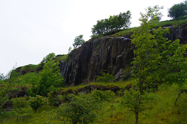 Quarried rock face at Walltown