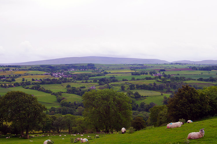Looking south to the North Pennines