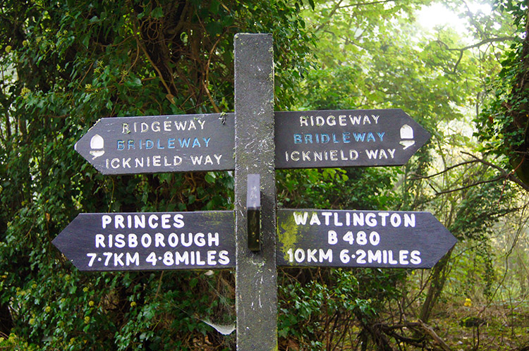 Cannot get lost on this stretch of the Ridgeway