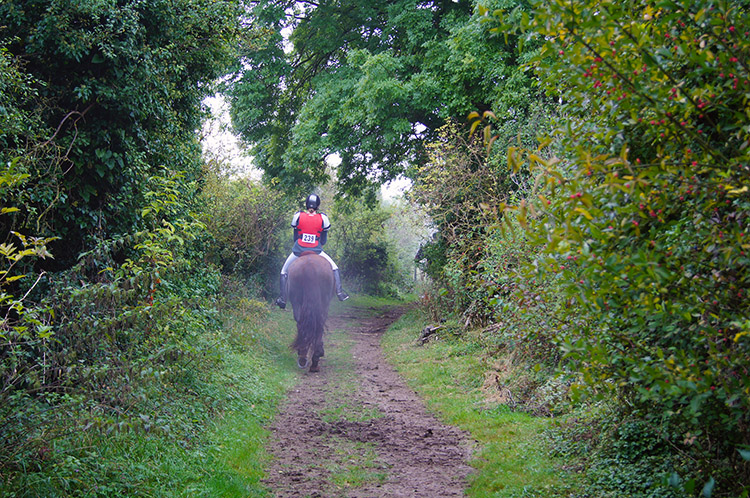 A rider ahead of me near Britwell Salome