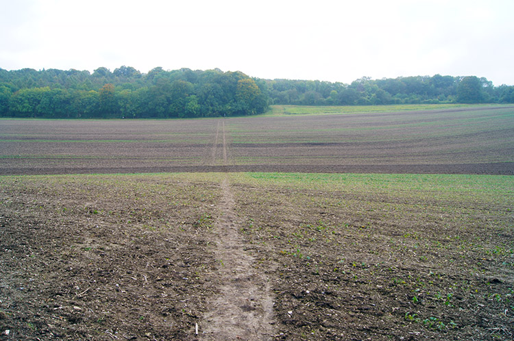 The field crossing after Ewelme Park