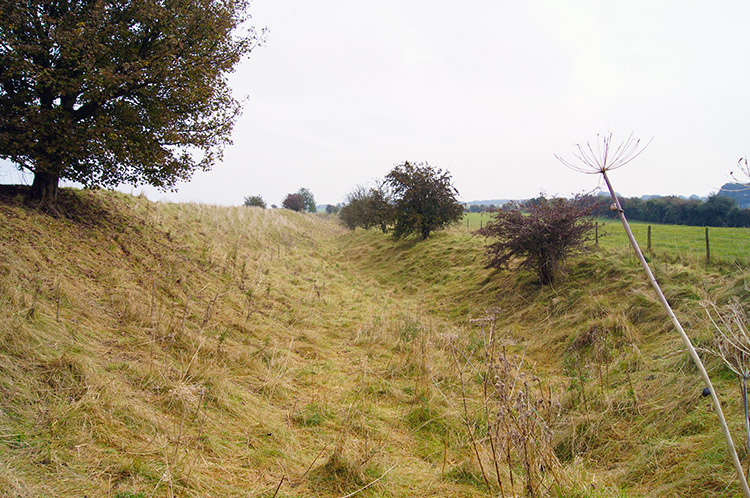 Outer ditch of Segsbury Camp/ Letcombe Castle