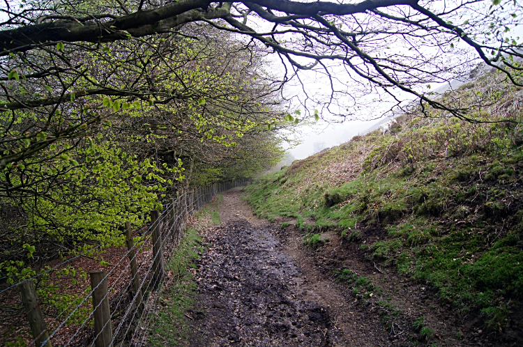 The path below Mynydd Twyn-glas