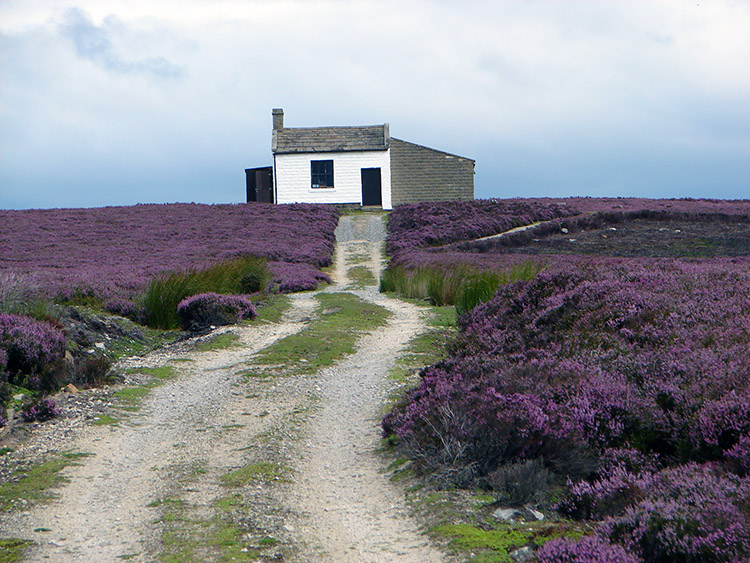 Shooting Lodge on Kirkby Malzeard Moor