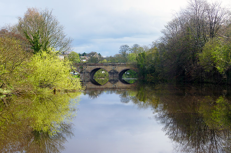 River Wharfe at Wetherby