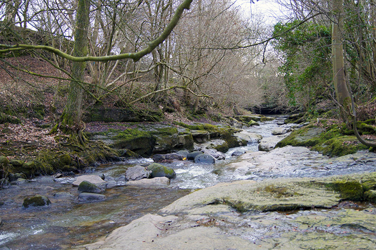 Stean Beck near How Stean Gorge