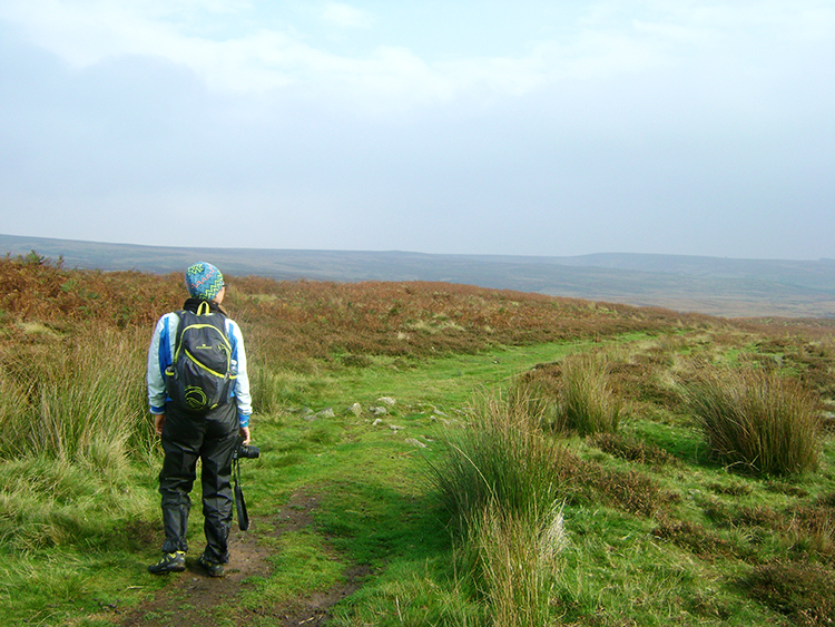 On Middleton Moor