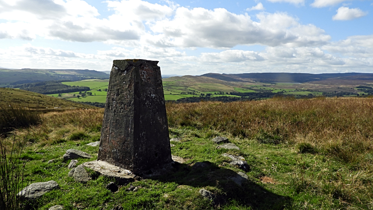 Trig pillar on Hammerthorn Hill