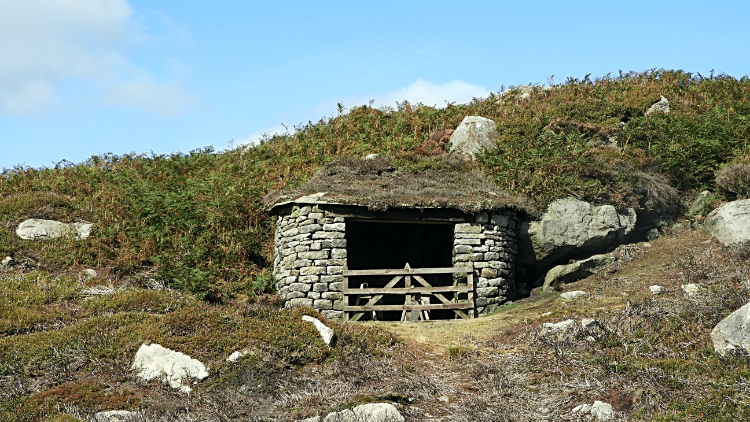 Sheep shelter at Pickles Gill Beck