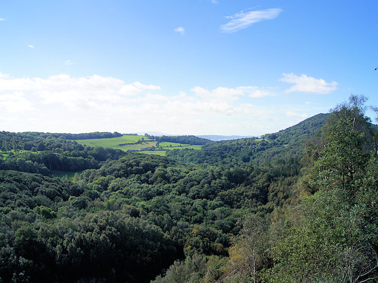 The view from above the Ercall Quarry