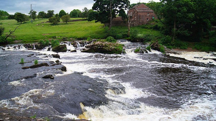River Eden near Force Mill