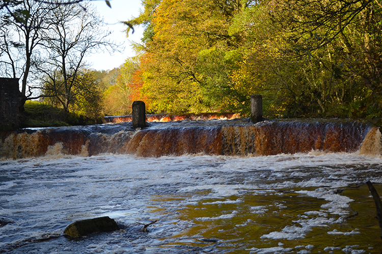 Weir on the River Greta at Swinholme