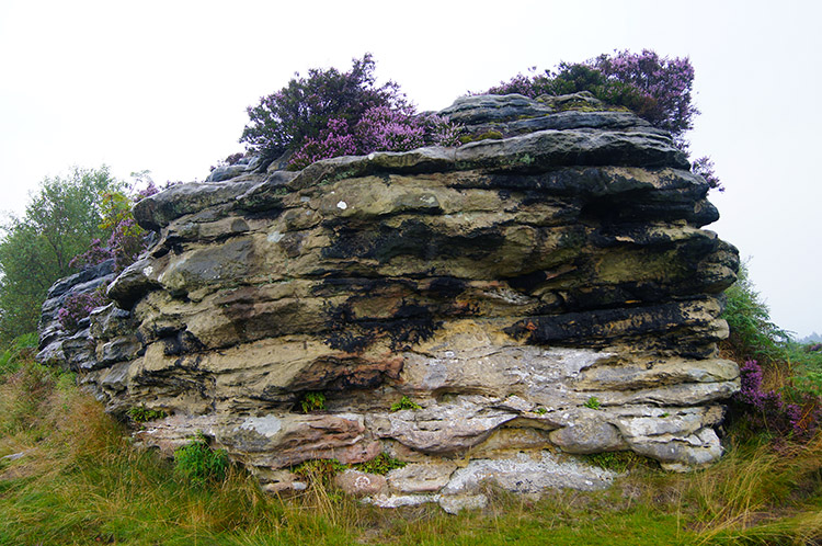 Bridestone with heather crown
