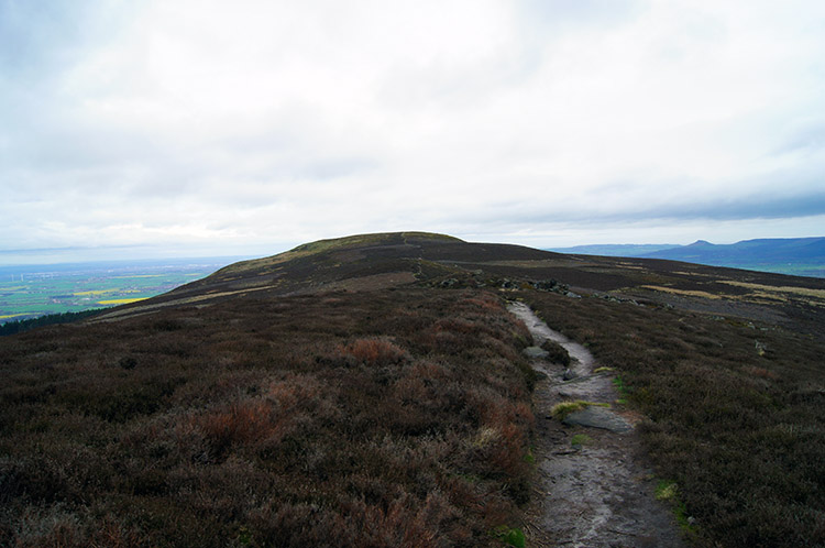 The view north along Cold Moor
