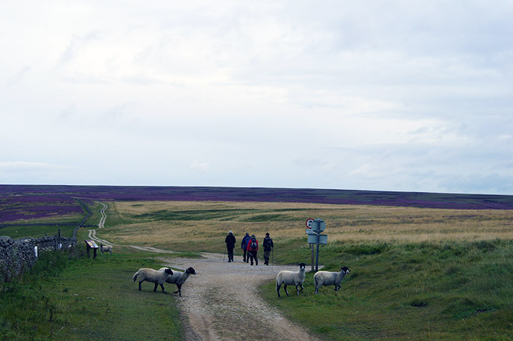 Joining the Cleveland Way