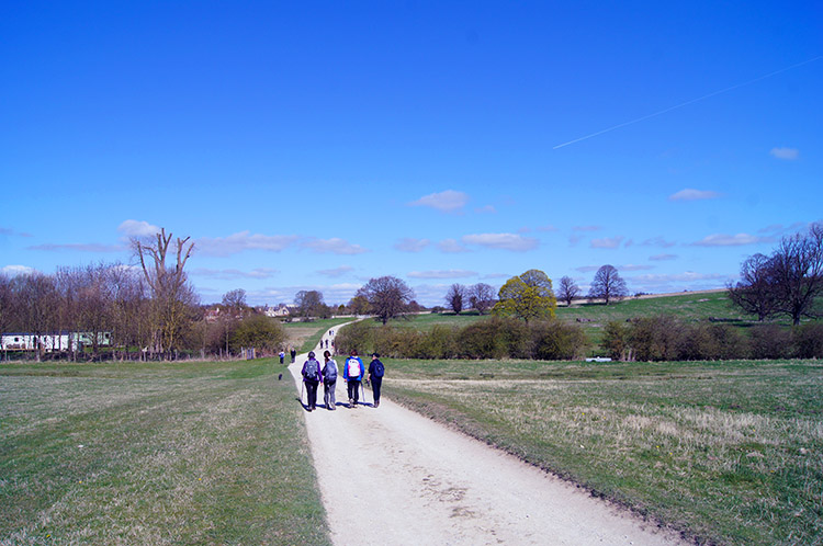Walkers exploring the Castle Howard area