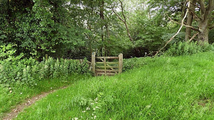 Gate into Callister Wood