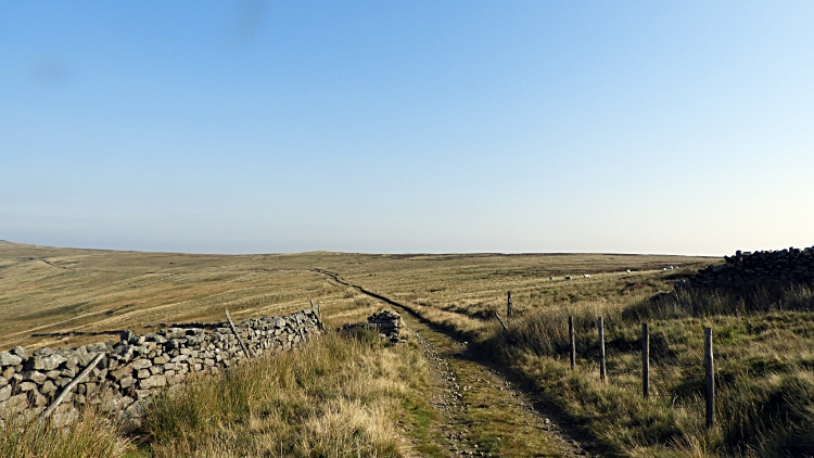 The path on the edge of Lofthouse Moor
