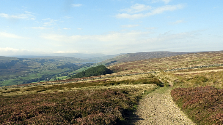 Upper Nidderdale and North Moor