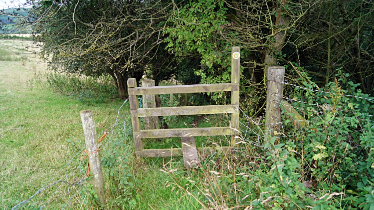 Stile leading into thicket