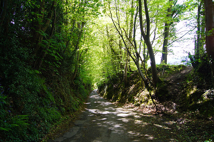 A Holloway road leading down into Abergavenny