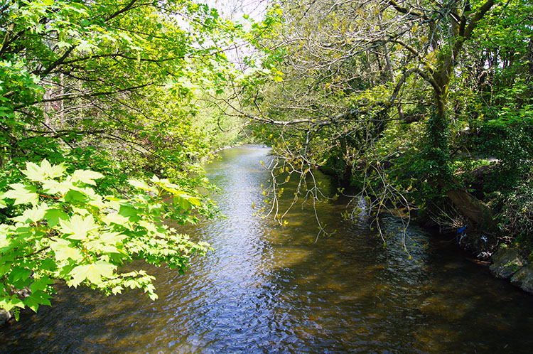 Rhymney River seen from the bridge in Machen