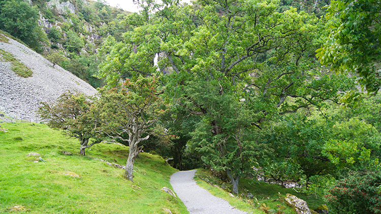 Path leading to Aber Falls