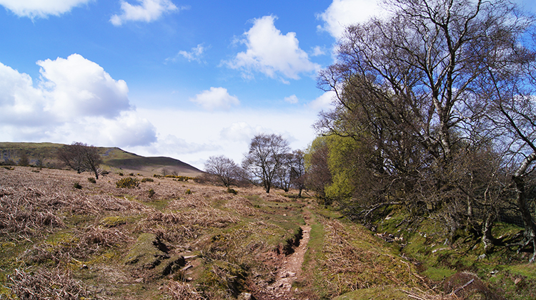 Heading home by skirting Allt Ddu