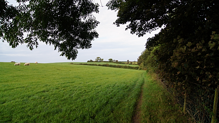 Countryside path back to Moelfre