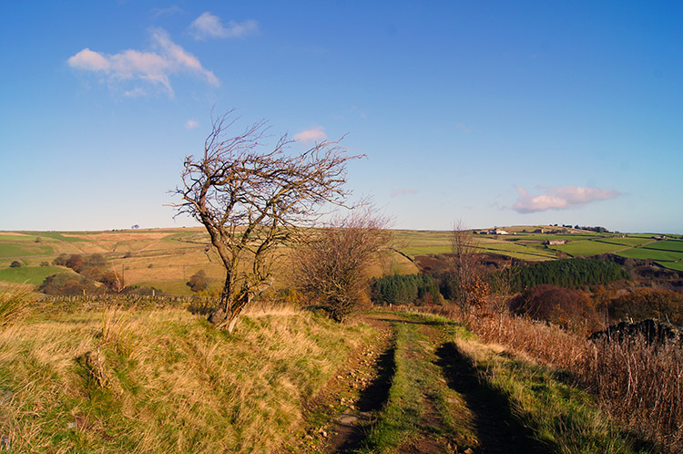 On the lane from Holme to Digley Reservoir