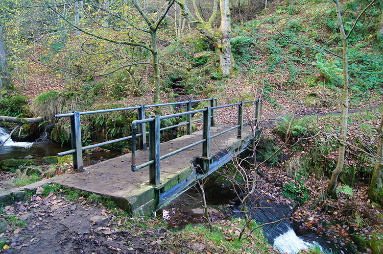Footbridge over Rake Dike