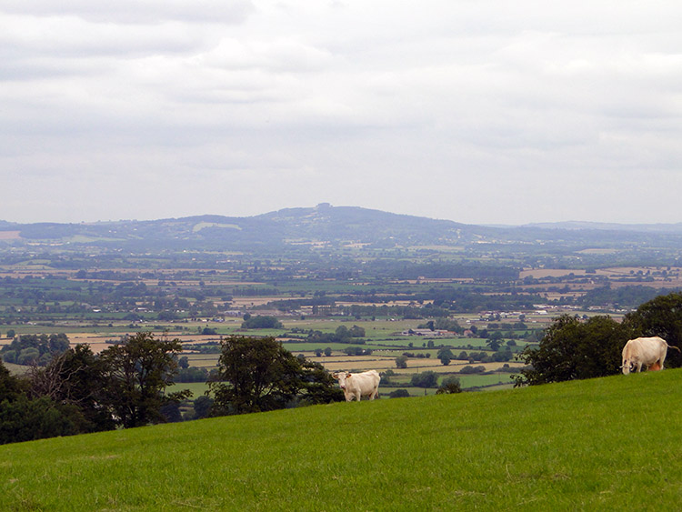 Looking south west from Westrip to Stinchcombe Hill