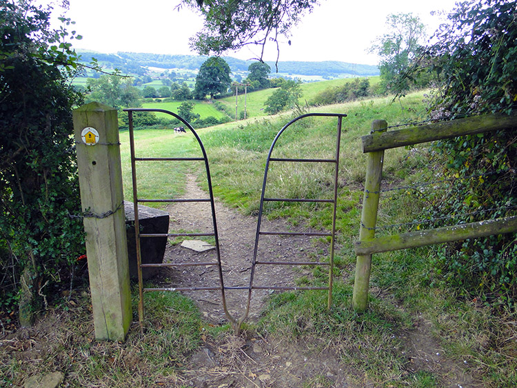Unusual field access near Westrip
