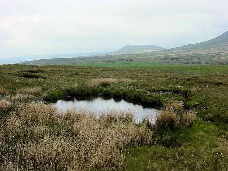 View from Great Hunter Sleets to Little Whernside